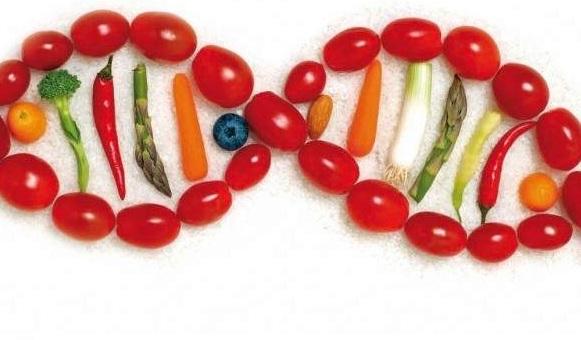 Immagine descrittiva di Nutrizione